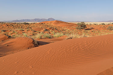 weiter Blick über rote Dünen im NamibRand Nature Reserve, Family Hideout, Namibia