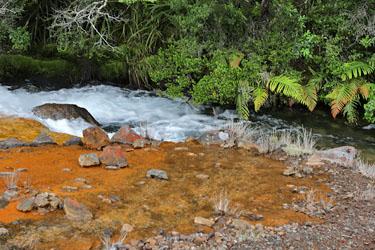 Farbenspiel an den Silica Rapids, Tongariro, Neuseeland