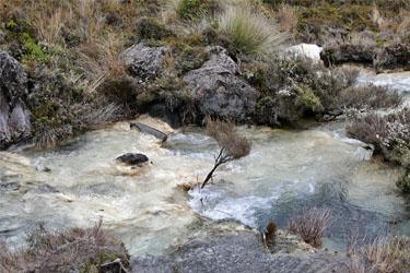 an den Silica Rapids, Tongariro, Neuseeland