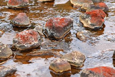 rostige Steine auf dem Weg zu den Silica Rapids, Tongariro, Neuseeland