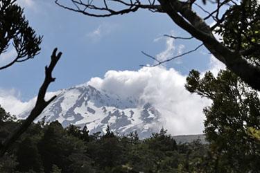Mount Ruapehu vom Waitonga Falls Walk aus, Neuseeland