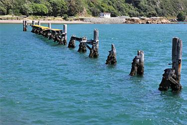 malerische Poller in einer Bucht vor Wellington, Neuseeland