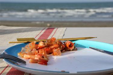 alles aufgegessan - Abendessen am Marfells Beach, Neuseeland