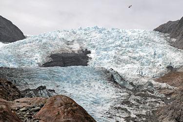 Franz-Josef-Gletscher, Neuseeland