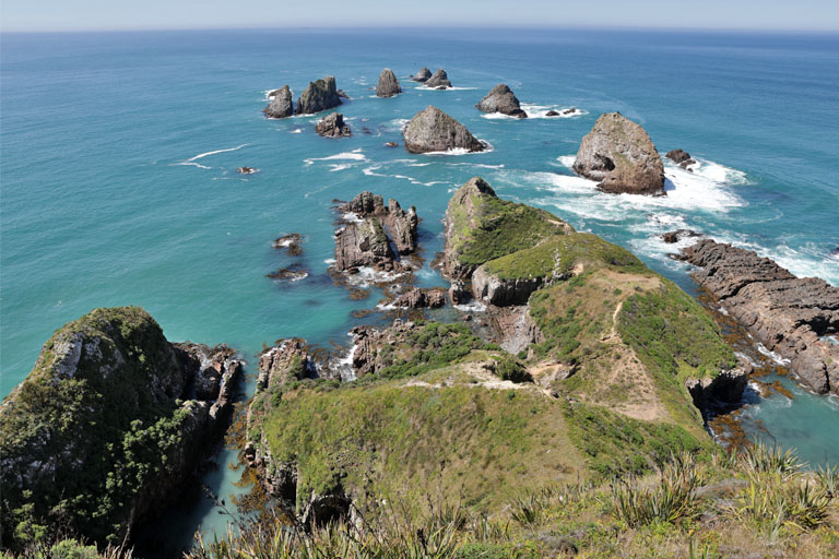 nugget point, catlins, neuseeland