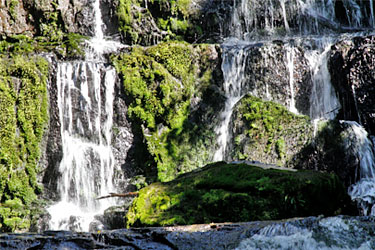 detailaufnahme purakaunui falls, catlins, neuseeland