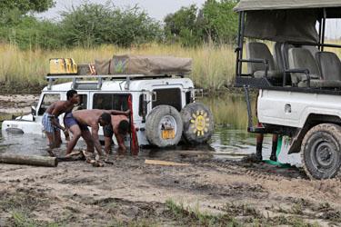 Rettungsaktion Landy Teil 2, Moremi, Botswana